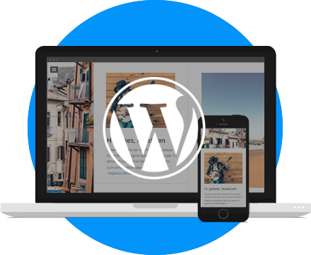 Mon site WordPress toutes options