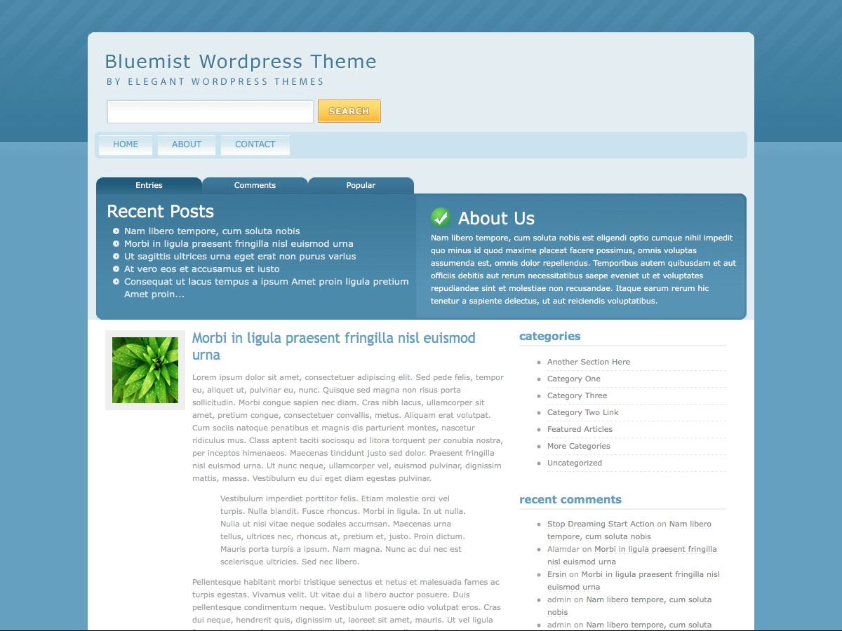 I nostri temi Wordpress - BlueMist