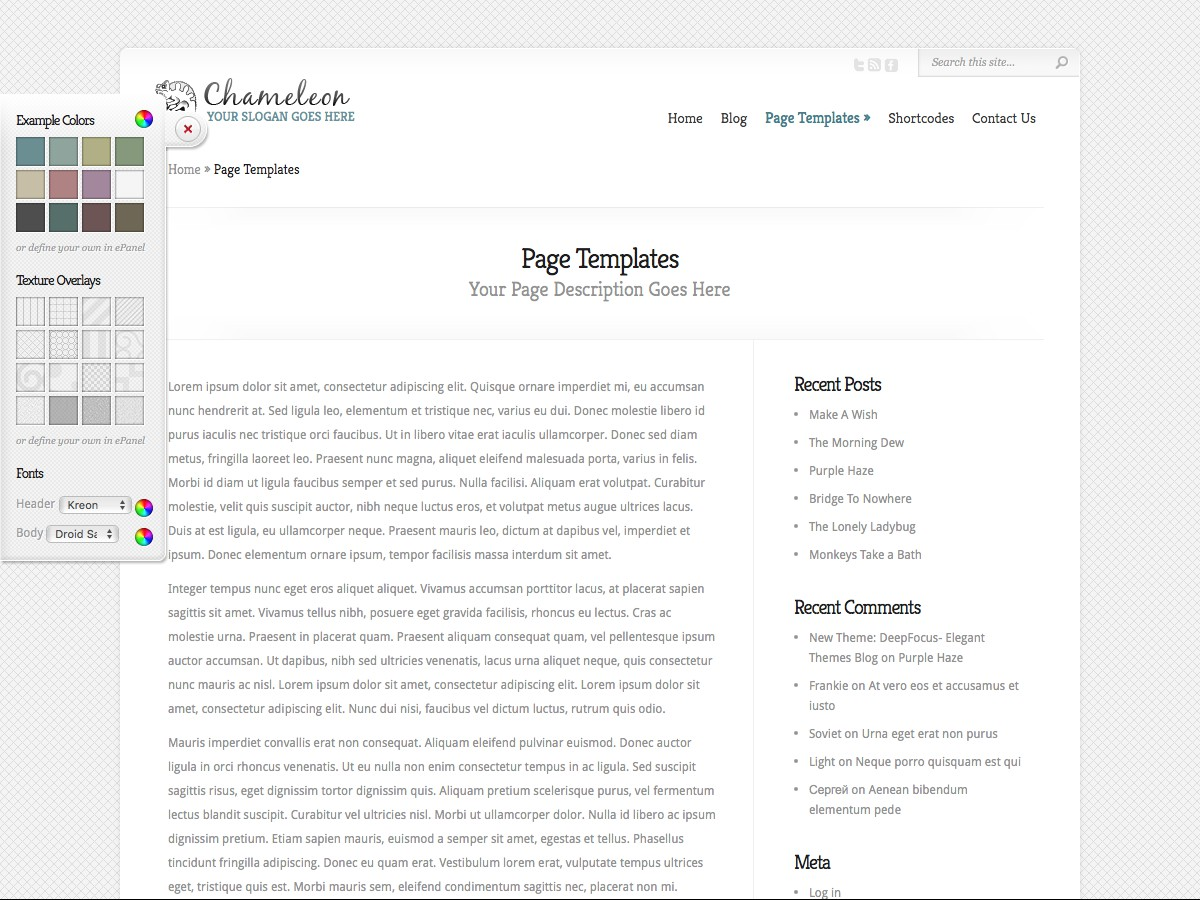 Our WordPress themes - Chameleon