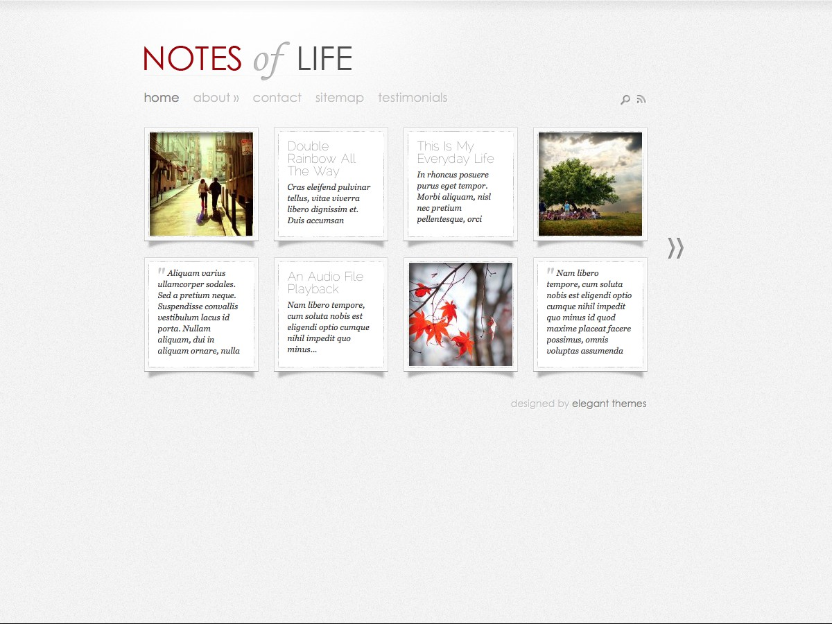 Nuestros temas WordPress - DailyNotes
