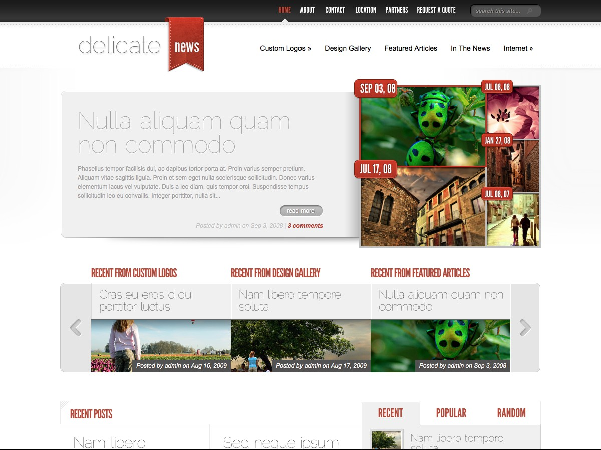 Nos thèmes WordPress - DelicateNews
