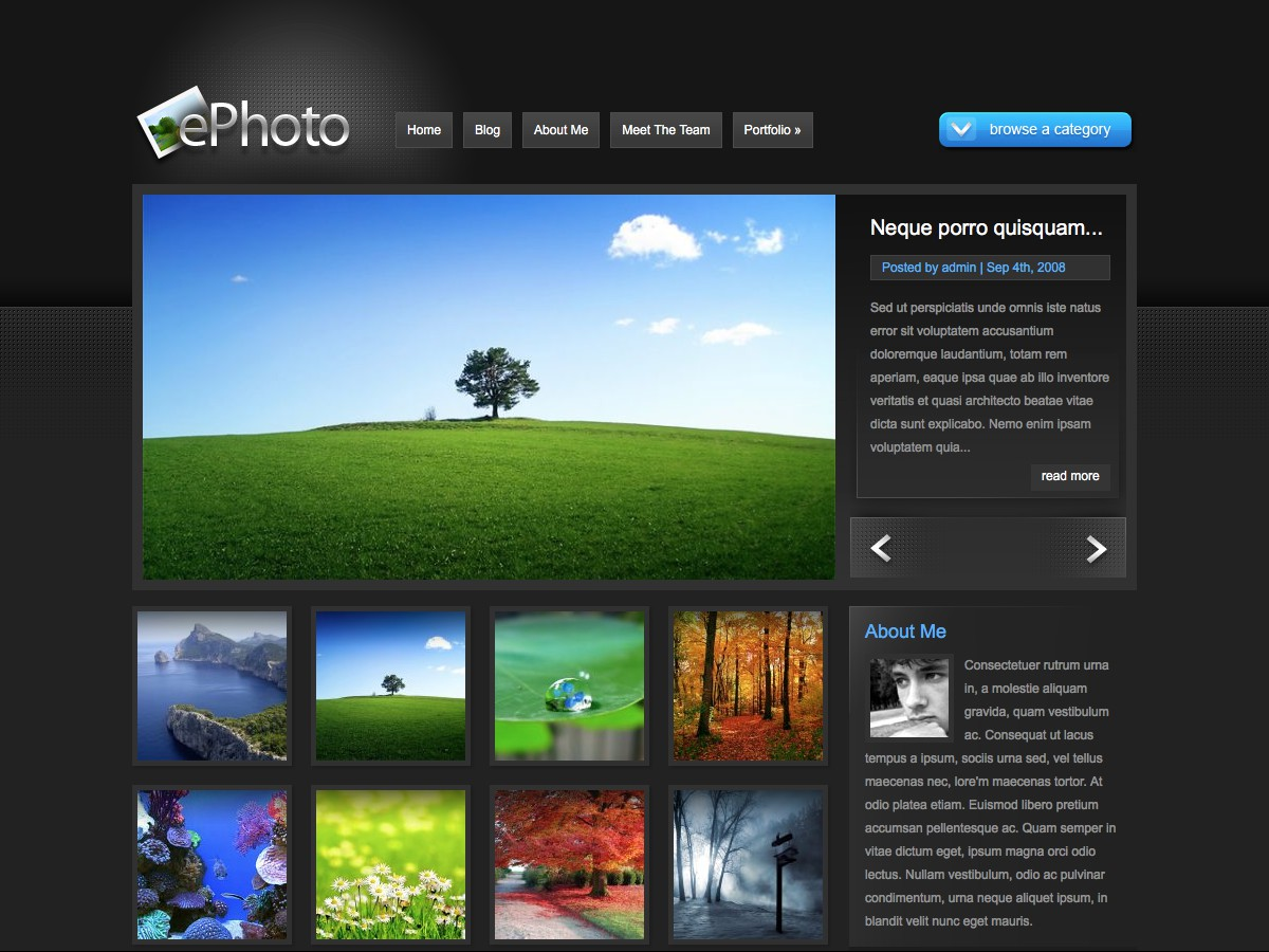 Our WordPress themes - ePhoto