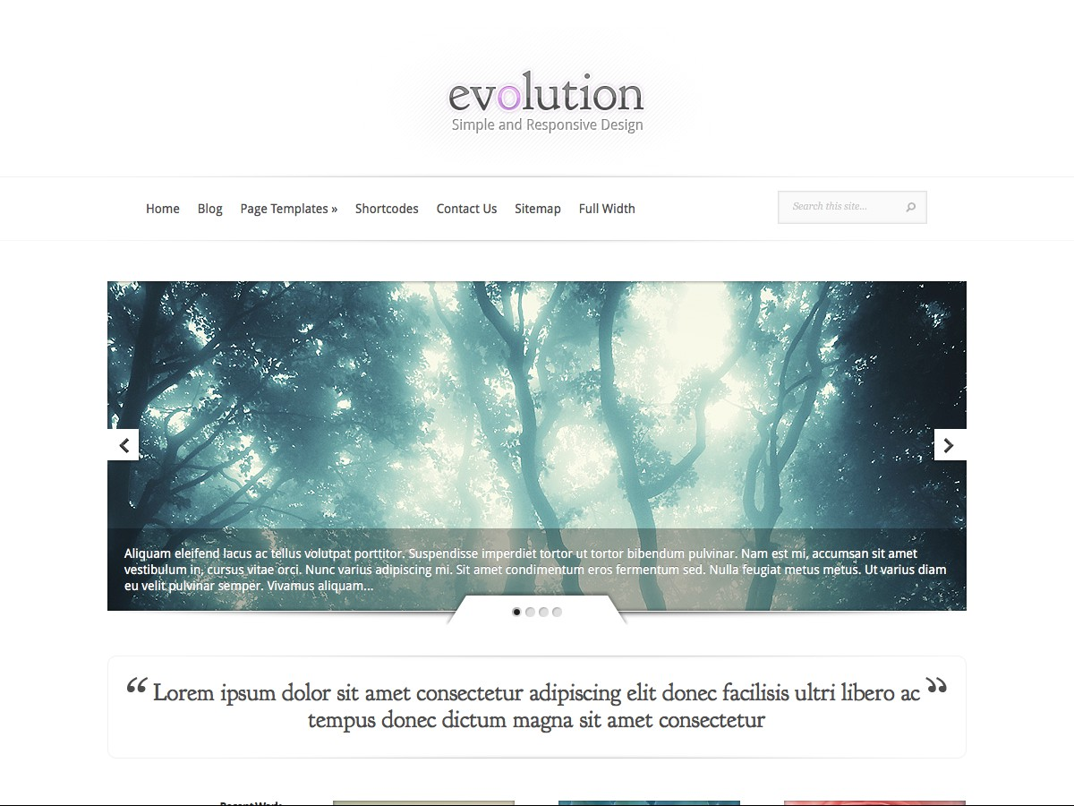 Nos thèmes WordPress - Evolution