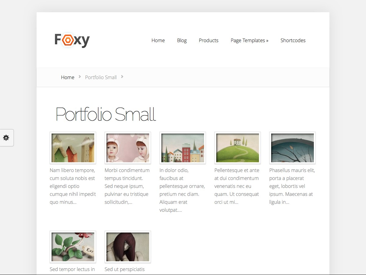 I nostri temi Wordpress - Foxy