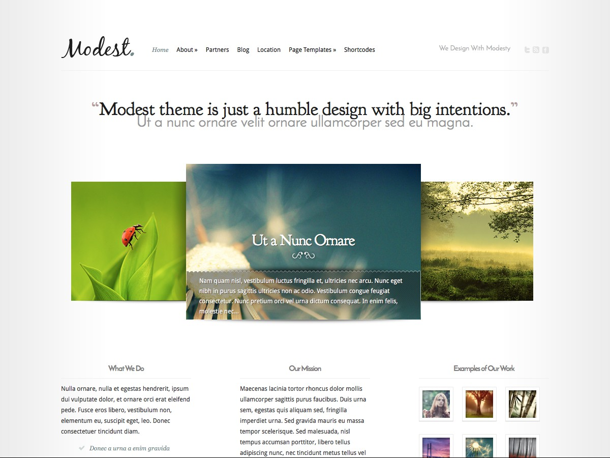 Our WordPress themes - Modest