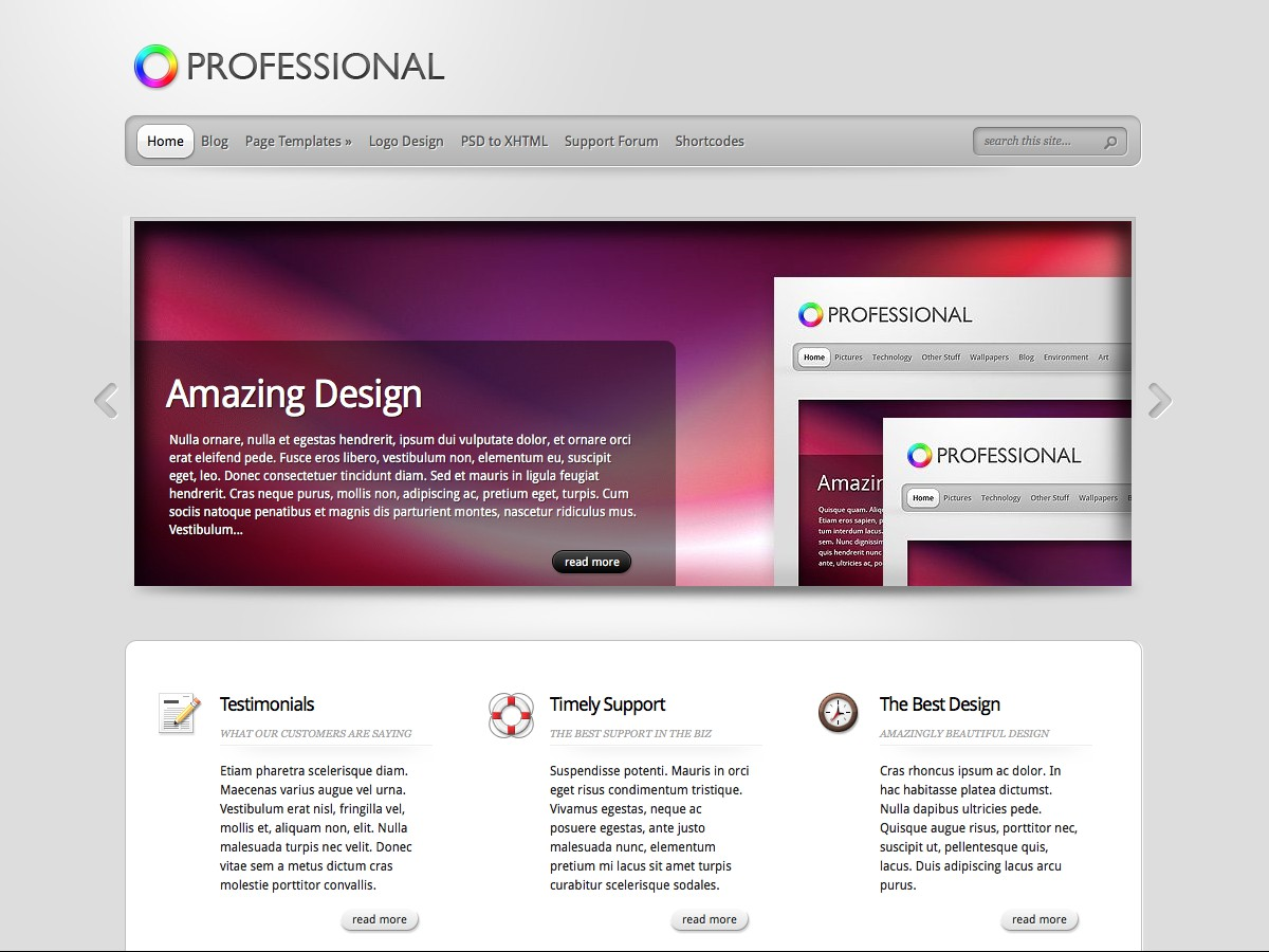 Our WordPress themes - Professional