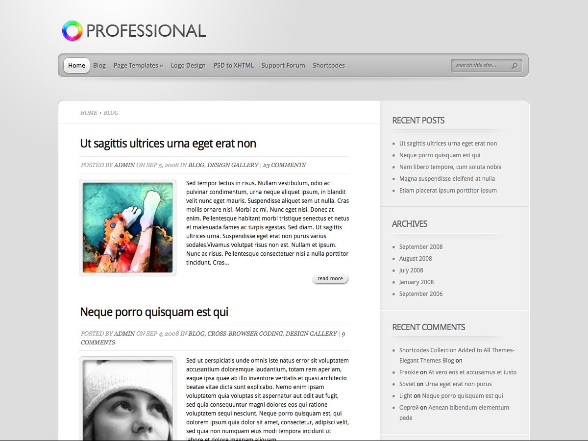 Nuestros temas WordPress - Professional