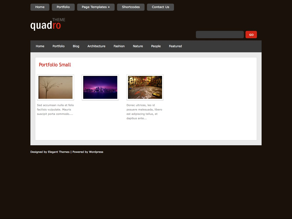 I nostri temi Wordpress - Quadro