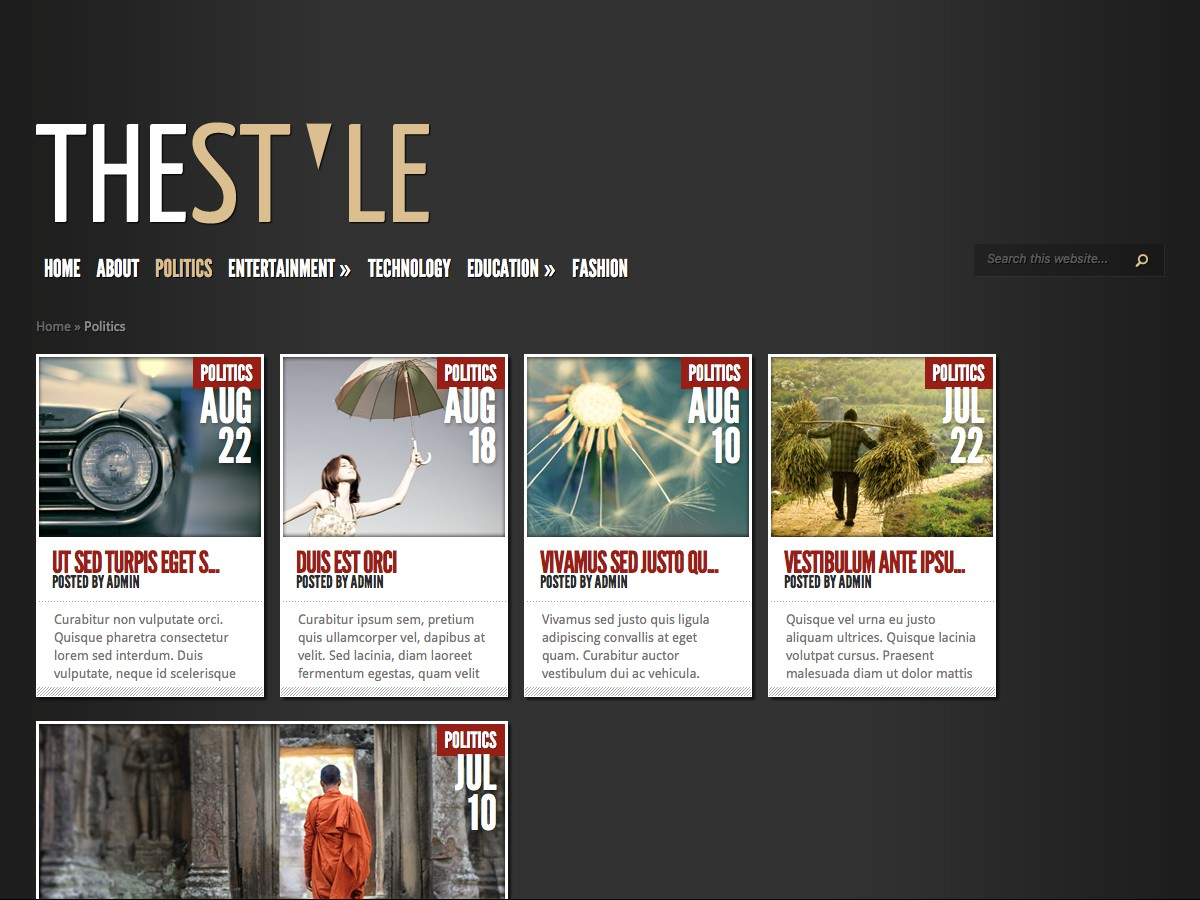Nos thèmes WordPress - TheStyle