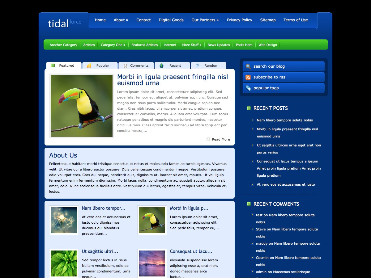 Nuestros temas WordPress - TidalForce